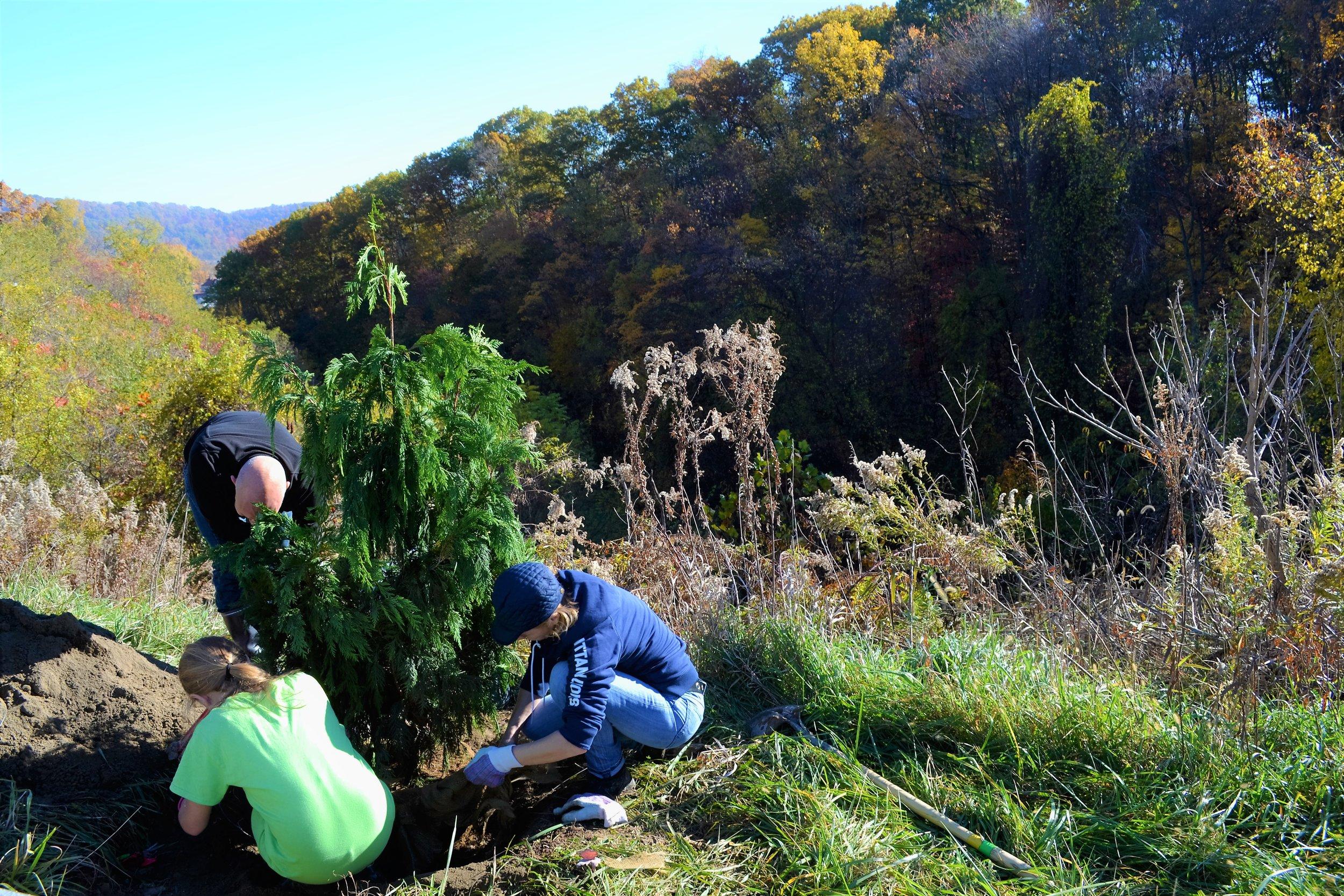 2016-11-05 Tree Planting Day (47).JPG