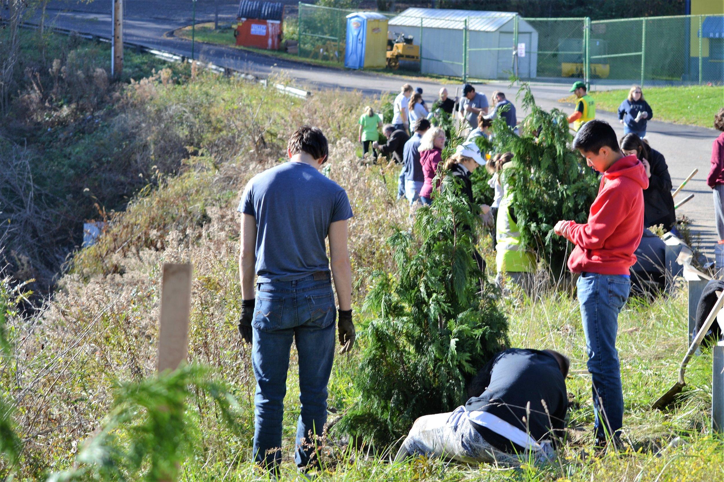 2016-11-05 Tree Planting Day (69).JPG