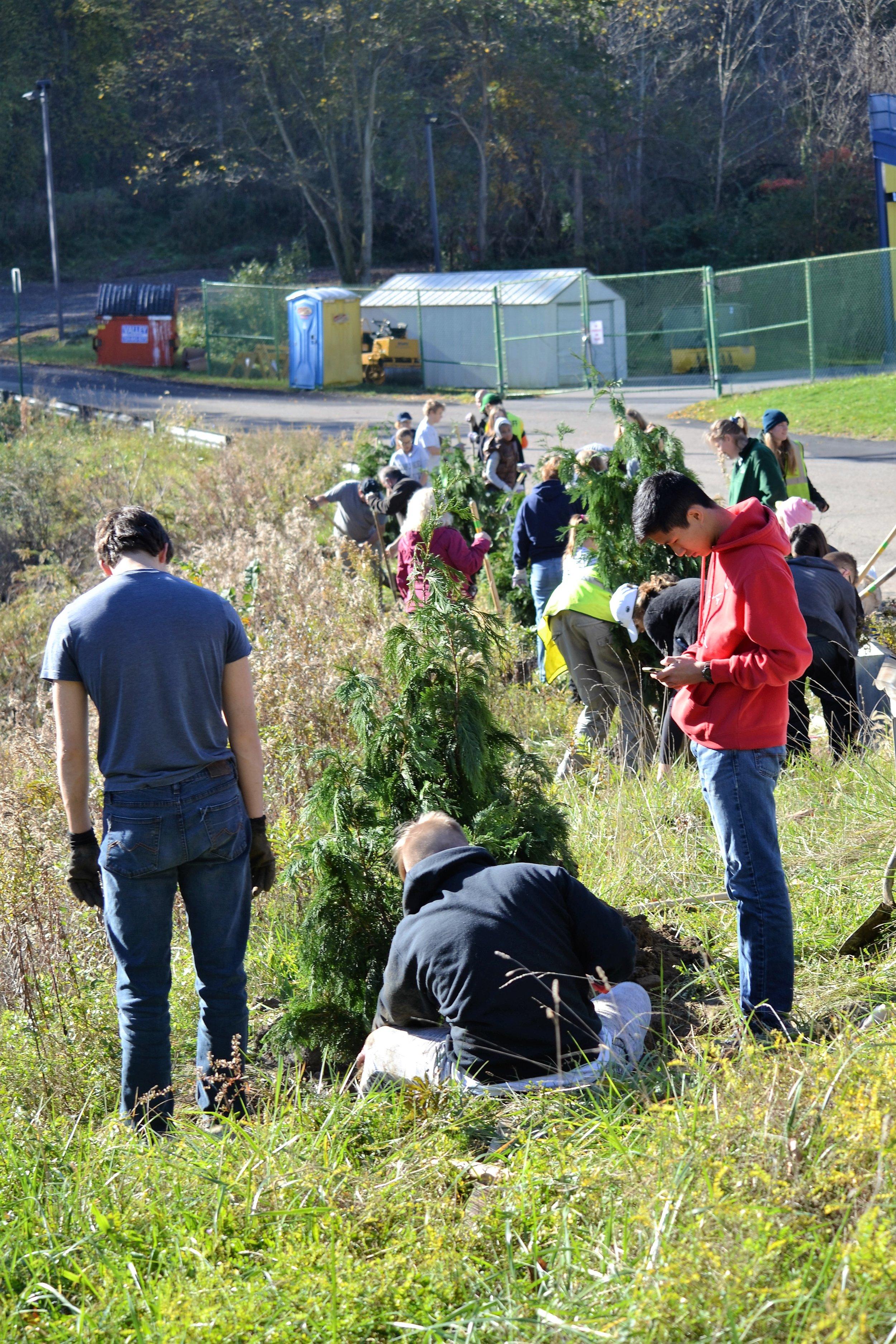 2016-11-05 Tree Planting Day (71).JPG