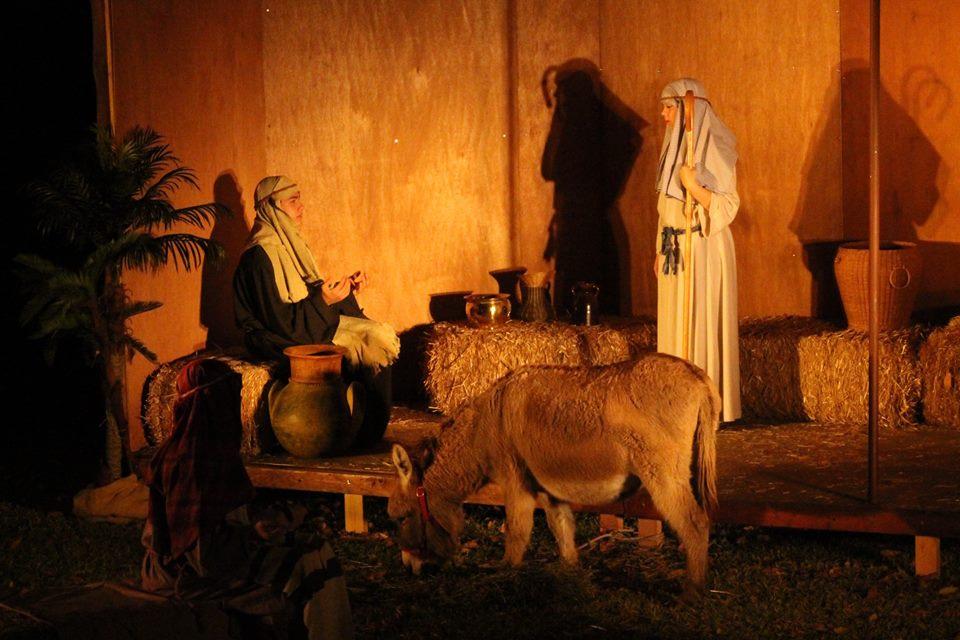 Living Nativity With Donkey.jpg
