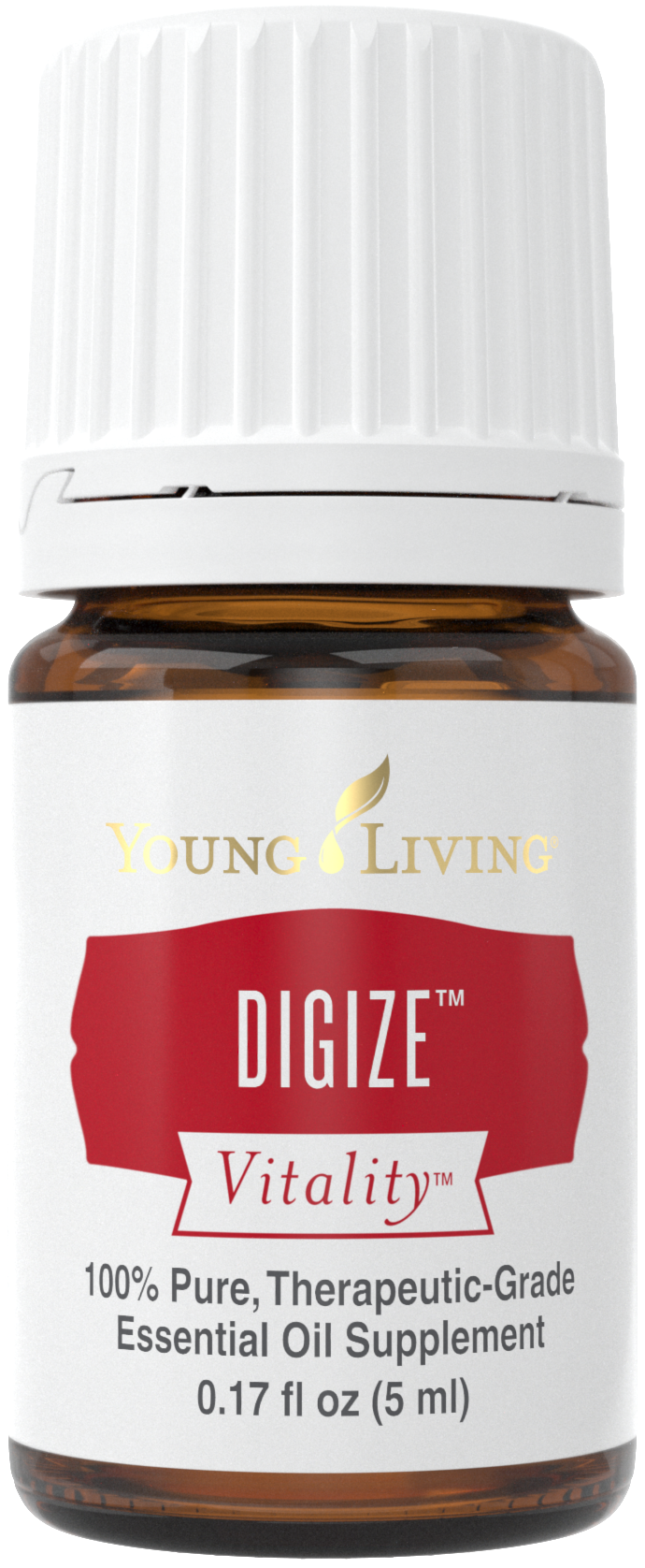 DiGize Vitality.png