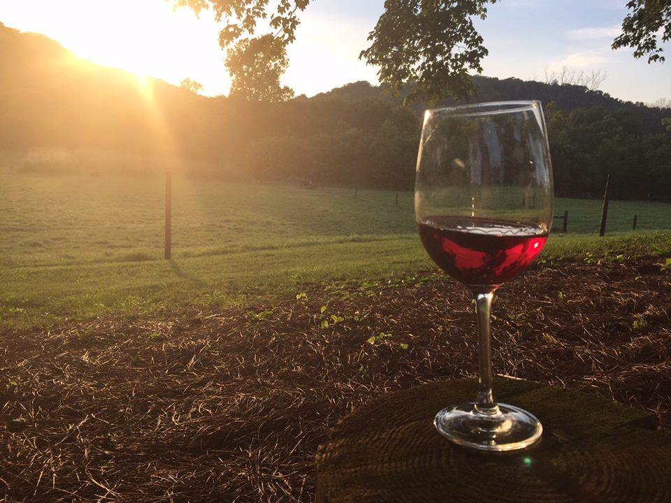 wines2.jpg