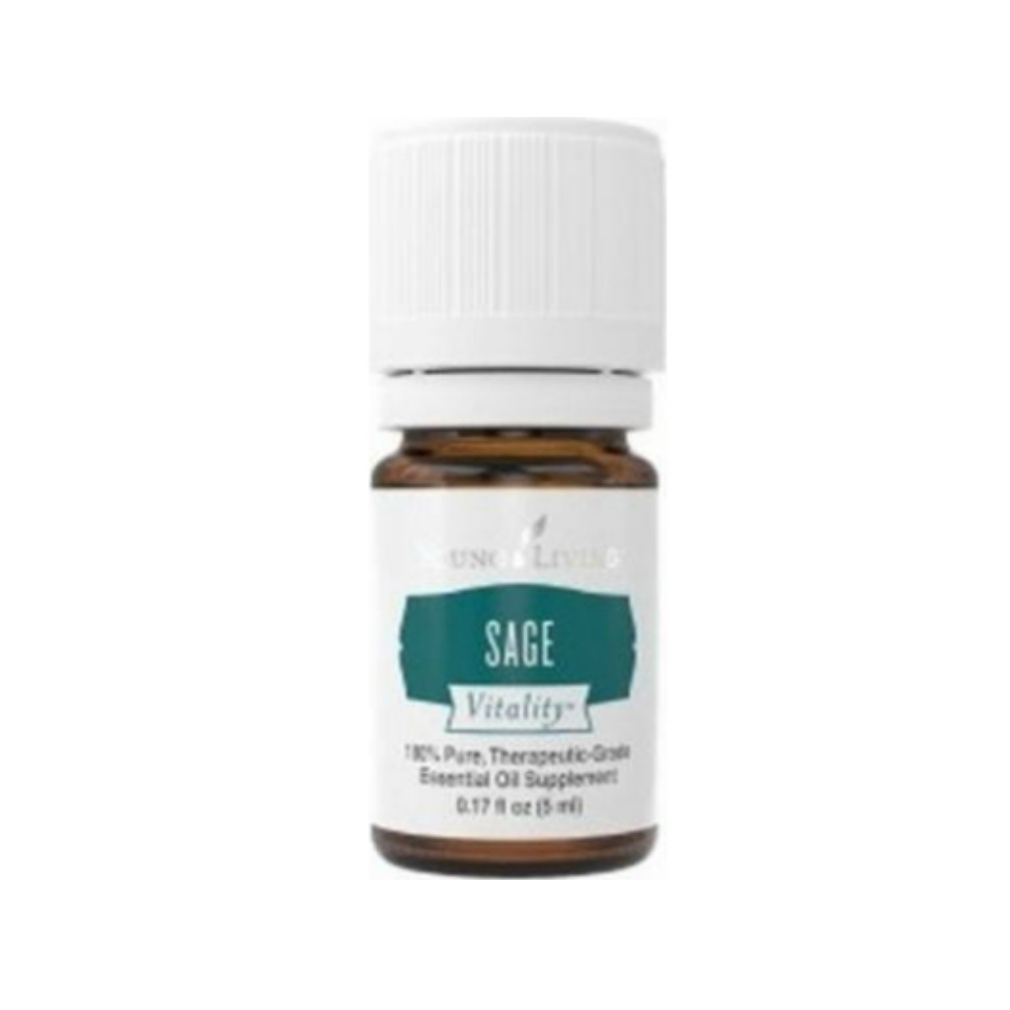 SAGE VITALITY    The sage plant is a member of the mint family. Sage Vitality™ is steamed distilled from the leaves and is known for its warm, earthy flavor that no Thanksgiving dinner could be without. Sage Vitality oil can also be a wonderful flavor enhancer for seafood, vegetables, breadsticks, corn breads, muffins, and other savory breads.   Click here   to learn more about this product.