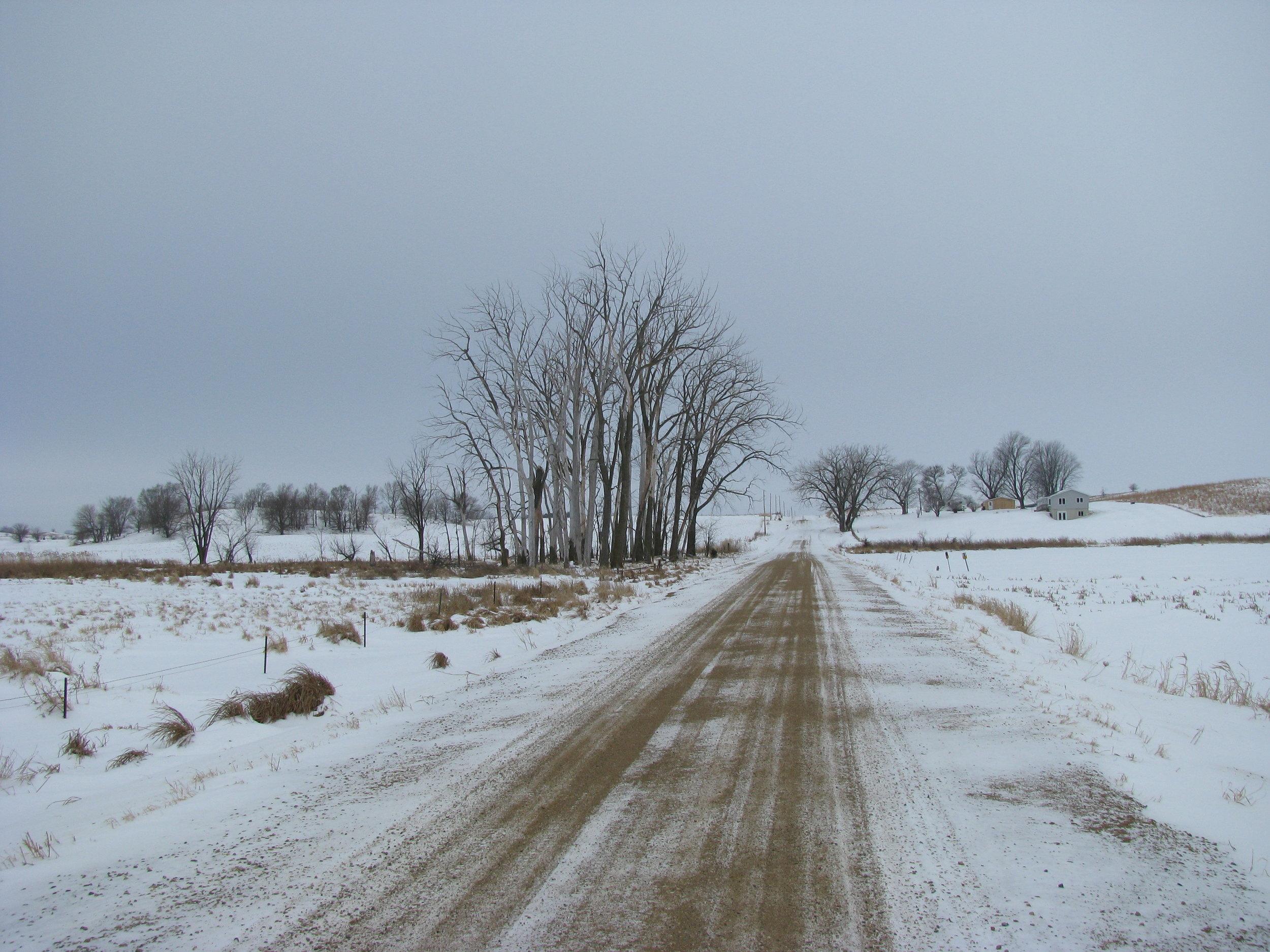 Marsh January 2011.jpg
