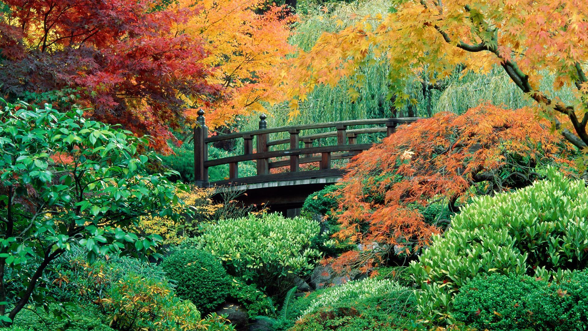 Bellevue Garden.jpg