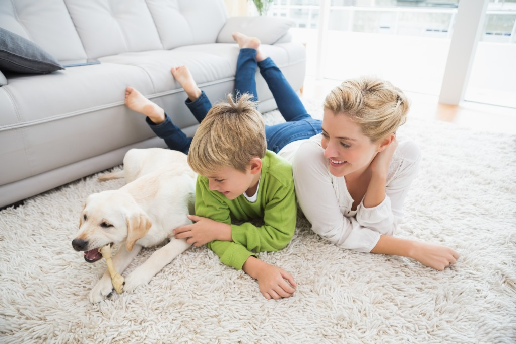 Carpet Cleaning Services.jpeg