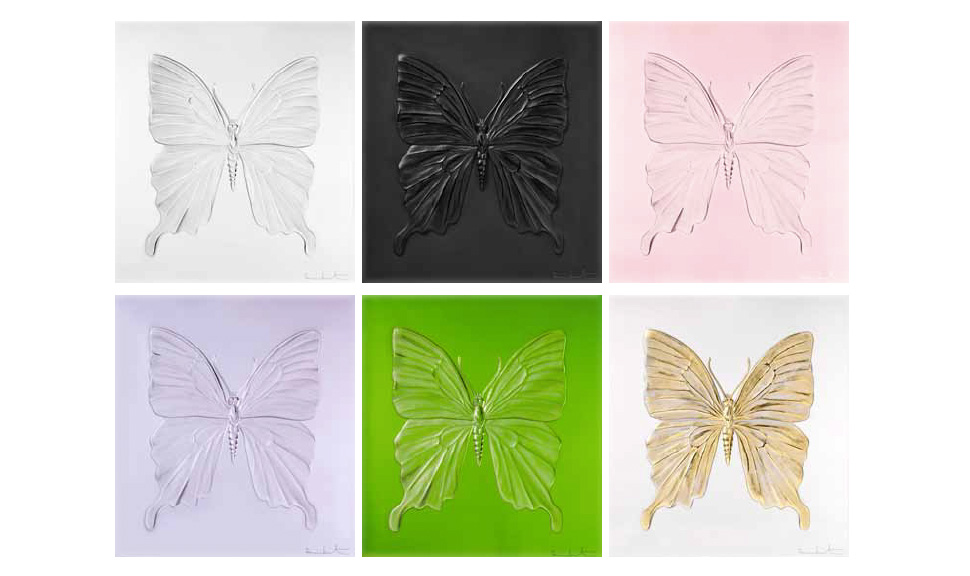 butterfly_promo1.jpg