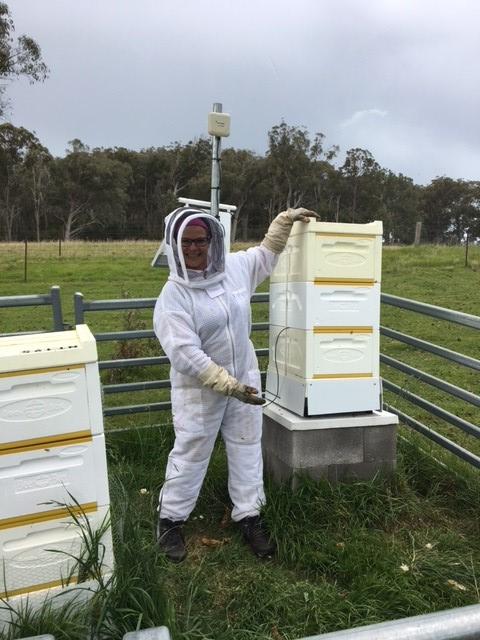 hives3.jpg