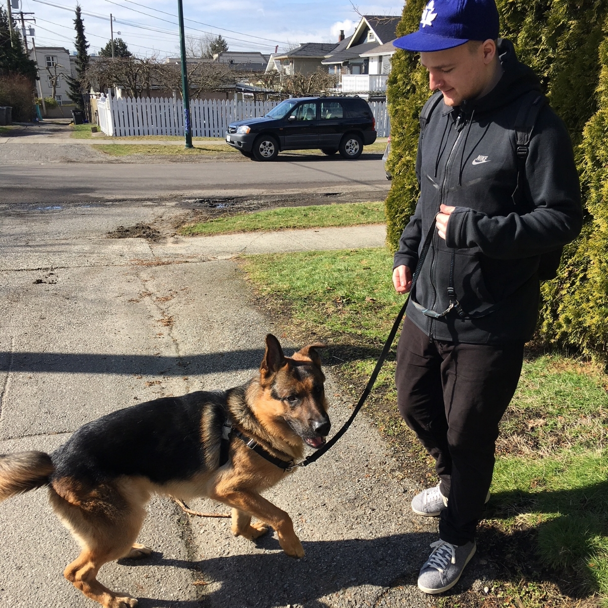 Hi! I'm Eamonn. - I grew up in Hastings Sunrise and when I'm not playing hockey or cheering on the Leafs I enjoy visiting all of the awesome parks in our neighbourhood with my own high energy dog, Elvys. I've always been a dog person and love getting to spend time with all of my furry clients! I also have my Dogsafe Canine First Aid certification.
