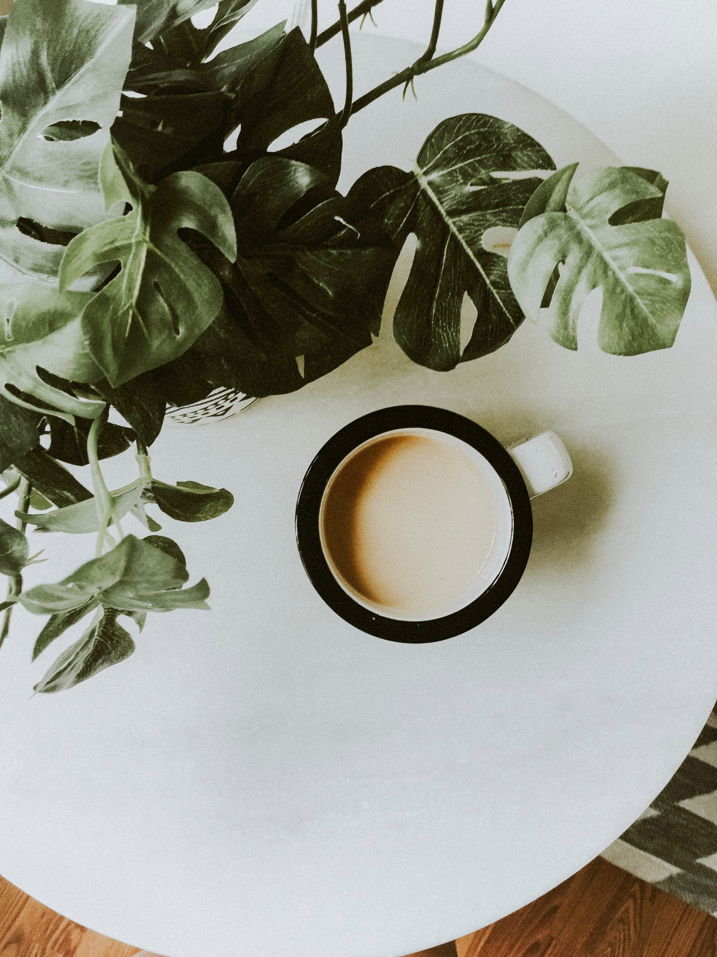 coffee and plant-1.jpg