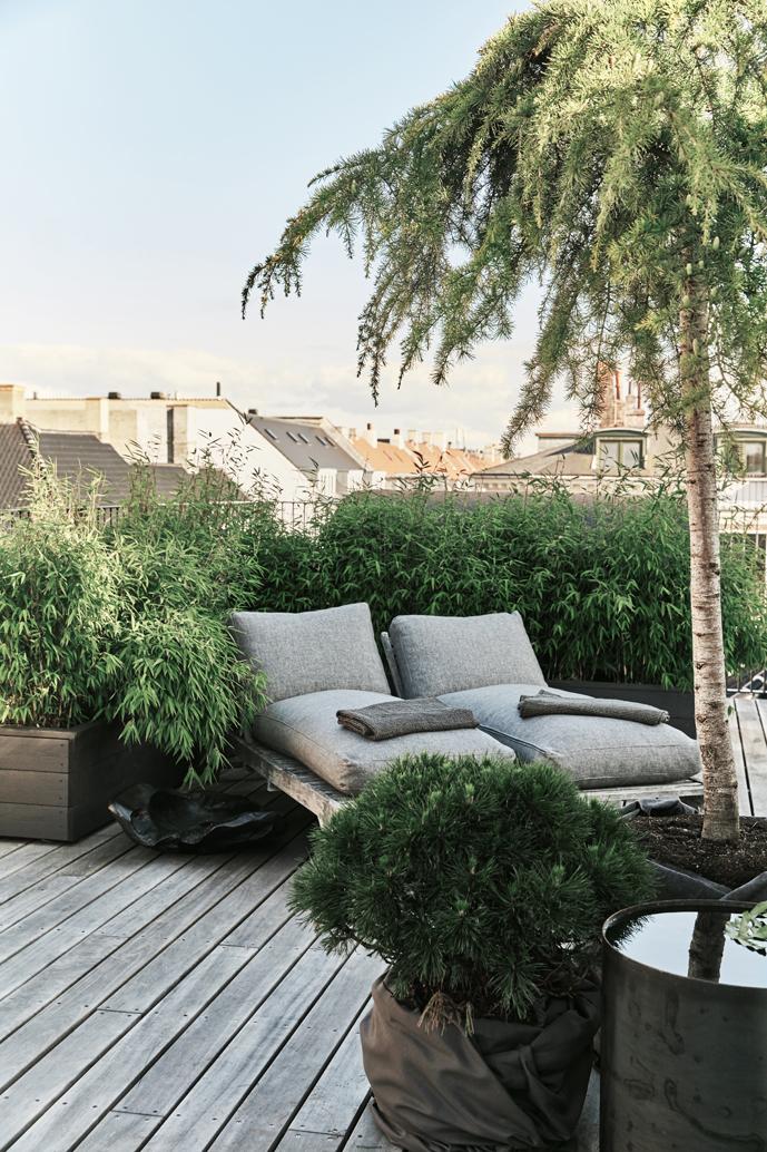 Michala Roof Top Terrace09.jpg