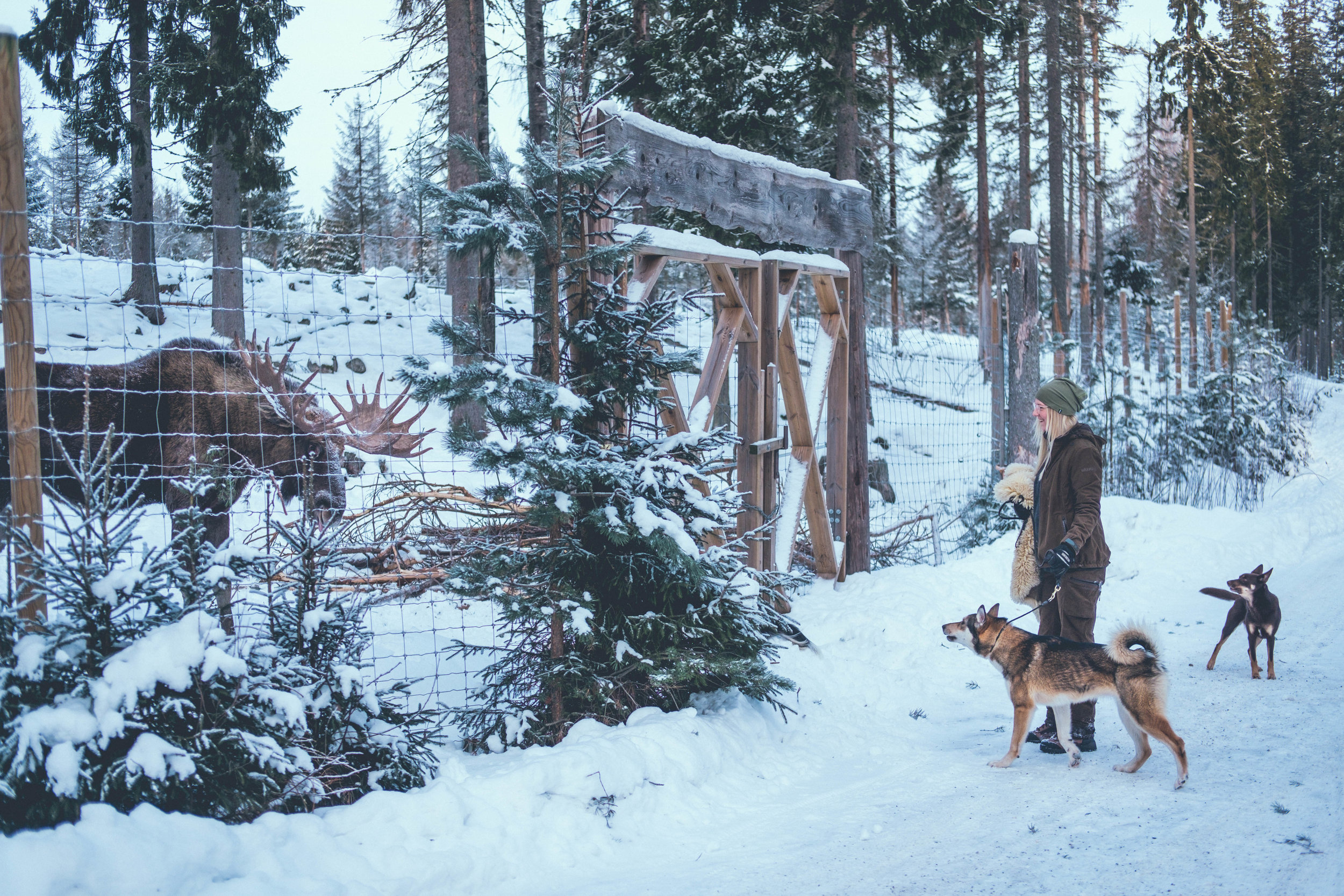 algparken-emilia-KUXAGRUPPEN-2019-2038.jpg