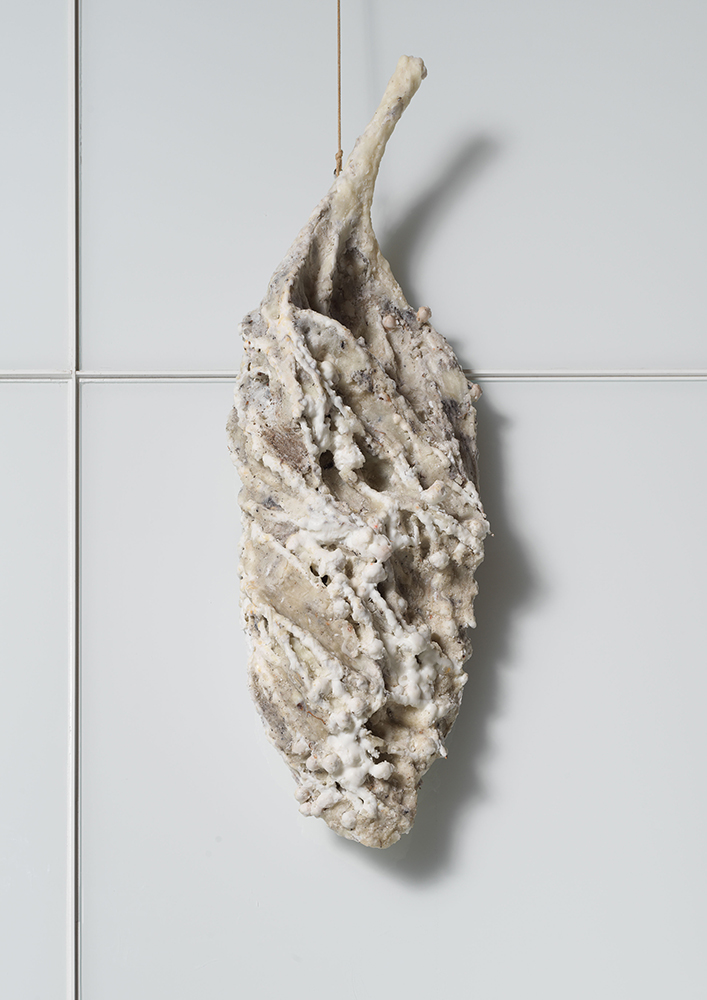 Gamete, 2018, Wax and organic material, 39 x 13 x 9 inches