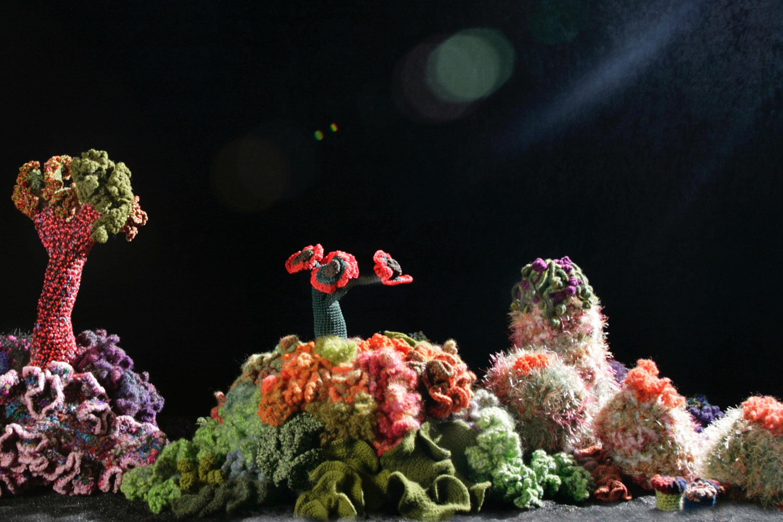 Lecture - Crochet Coral Reef