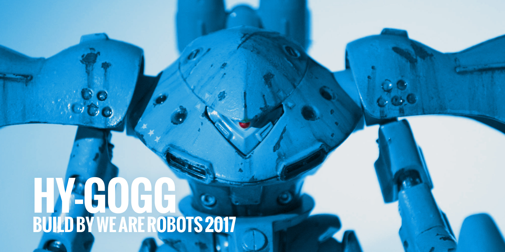 Hy-Gogg Build