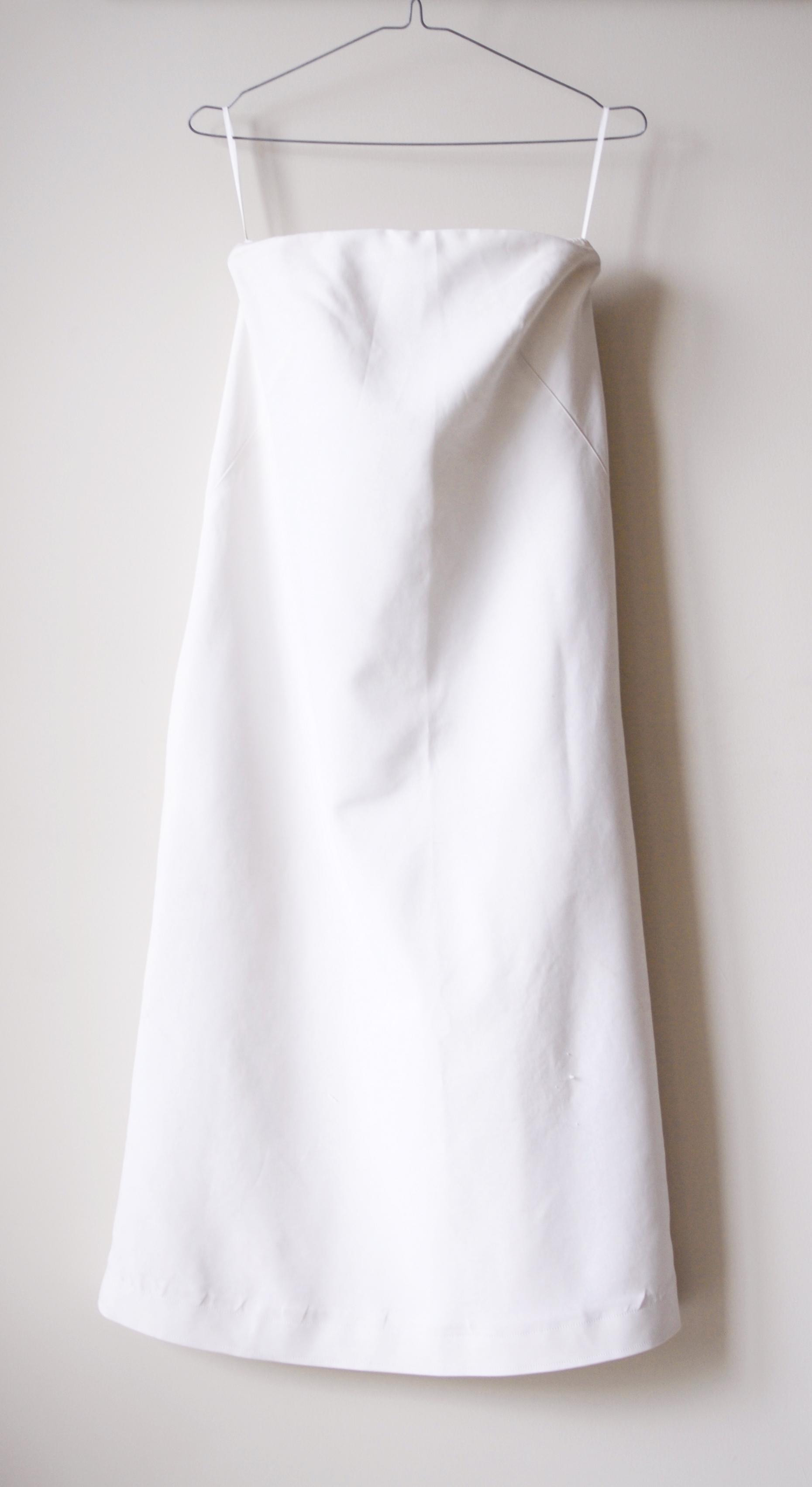 Aritzia Dress.jpg