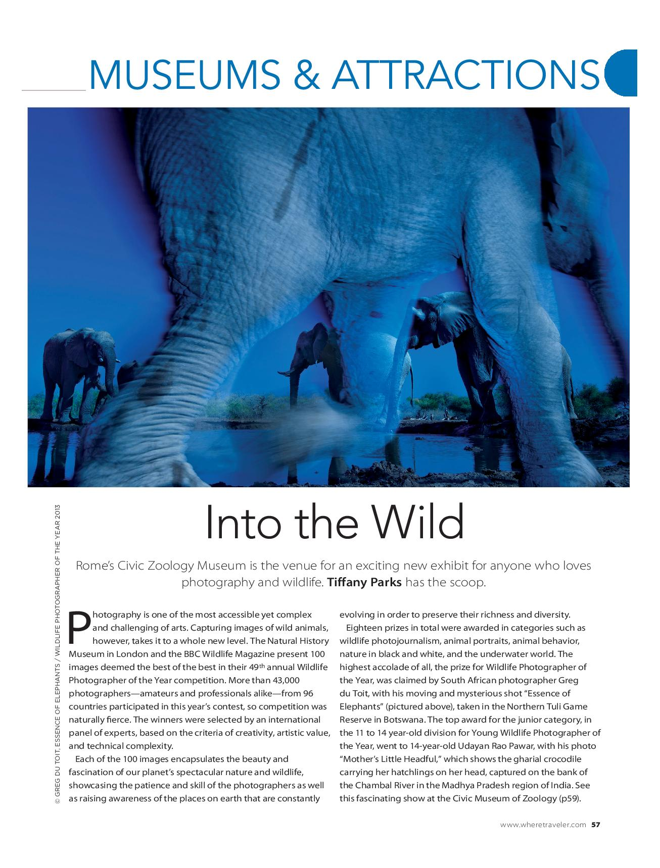 Into the Wild, December 2014-page-001.jpg