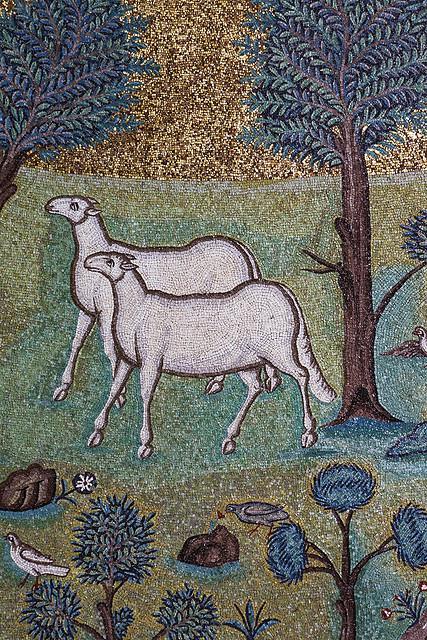 Sheep mosaic ravenna.jpg