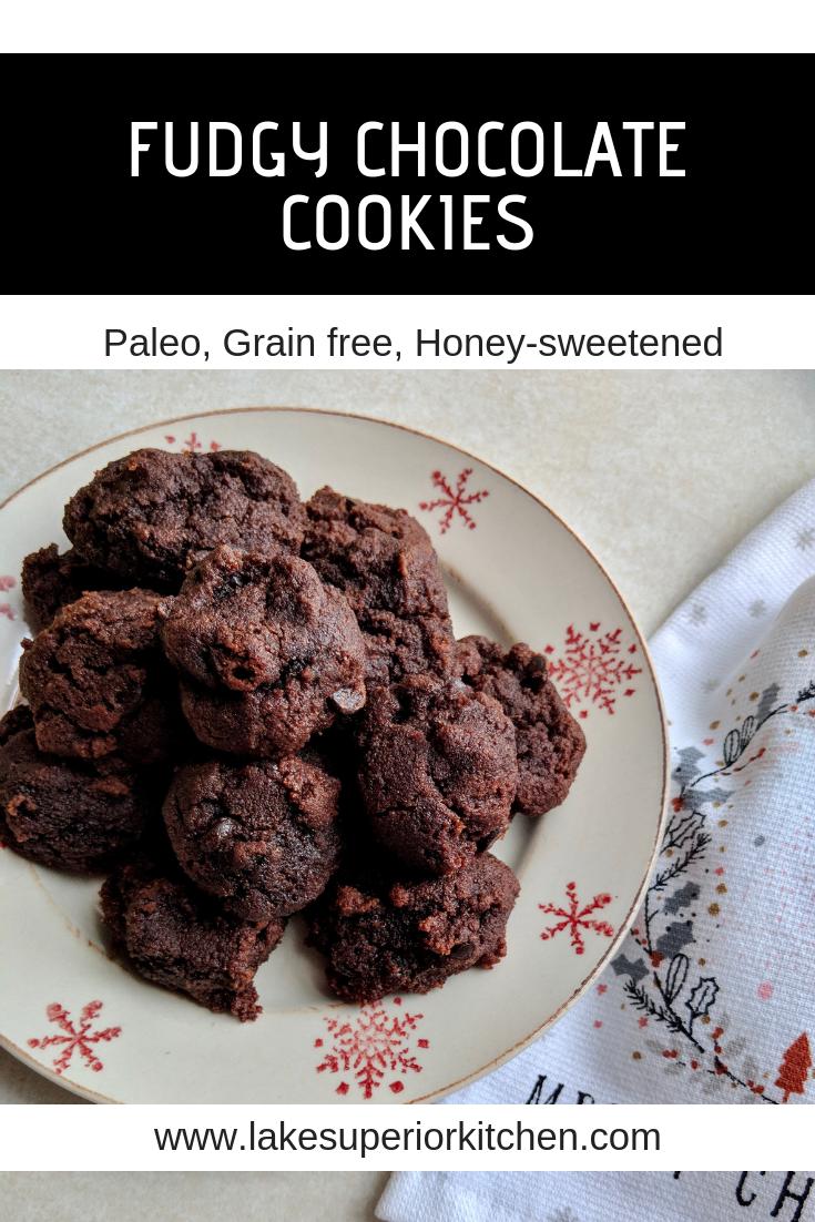 Fudgy Chocolate Cookies, Lake Superior Kitchen, Paleo cookies, grain free, no sugar, gluten free