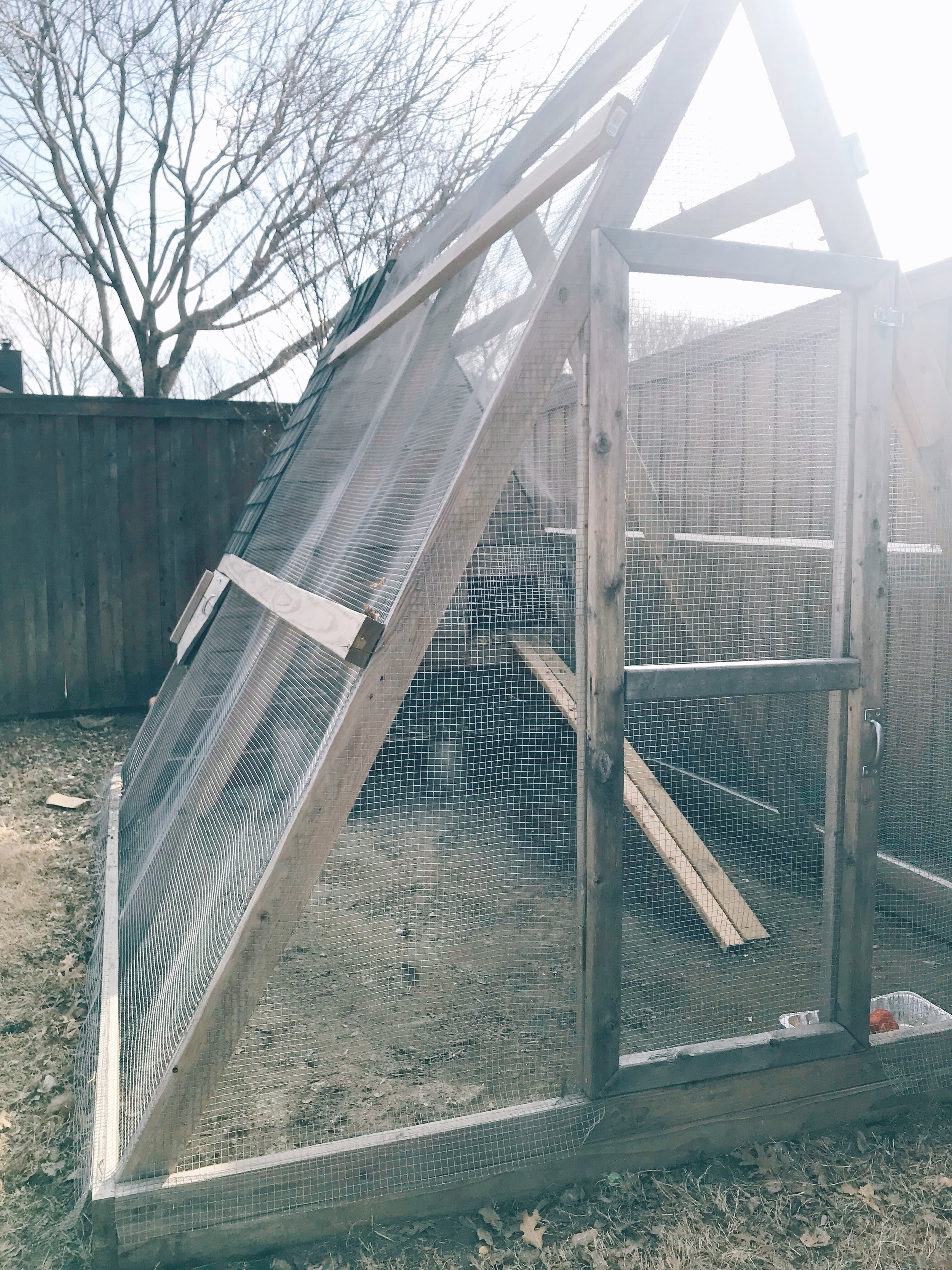 Basic design - I wanted the chickens to have as much run space as we could, without spending a ton on materials! I also wanted to be able to walk in to clean the run floor and go in and out with the feeder and waterer.