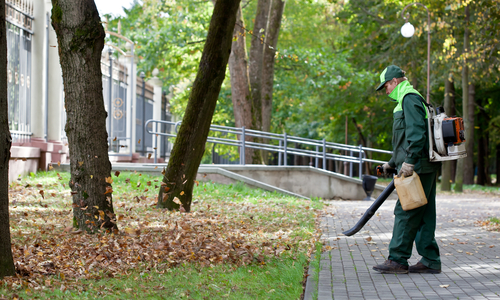 Fall Cleaning  Removal of leaves and mulch freshening