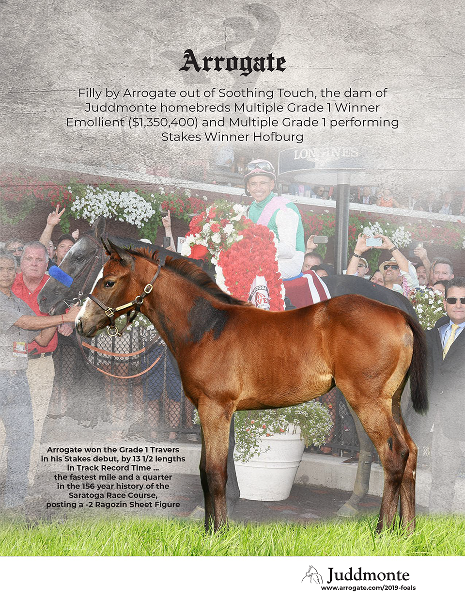 JF_AR_Website_2019Weanlings_SoothingTouch_Ad.png