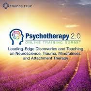 Psychotherapy-training-summit-2015.jpg