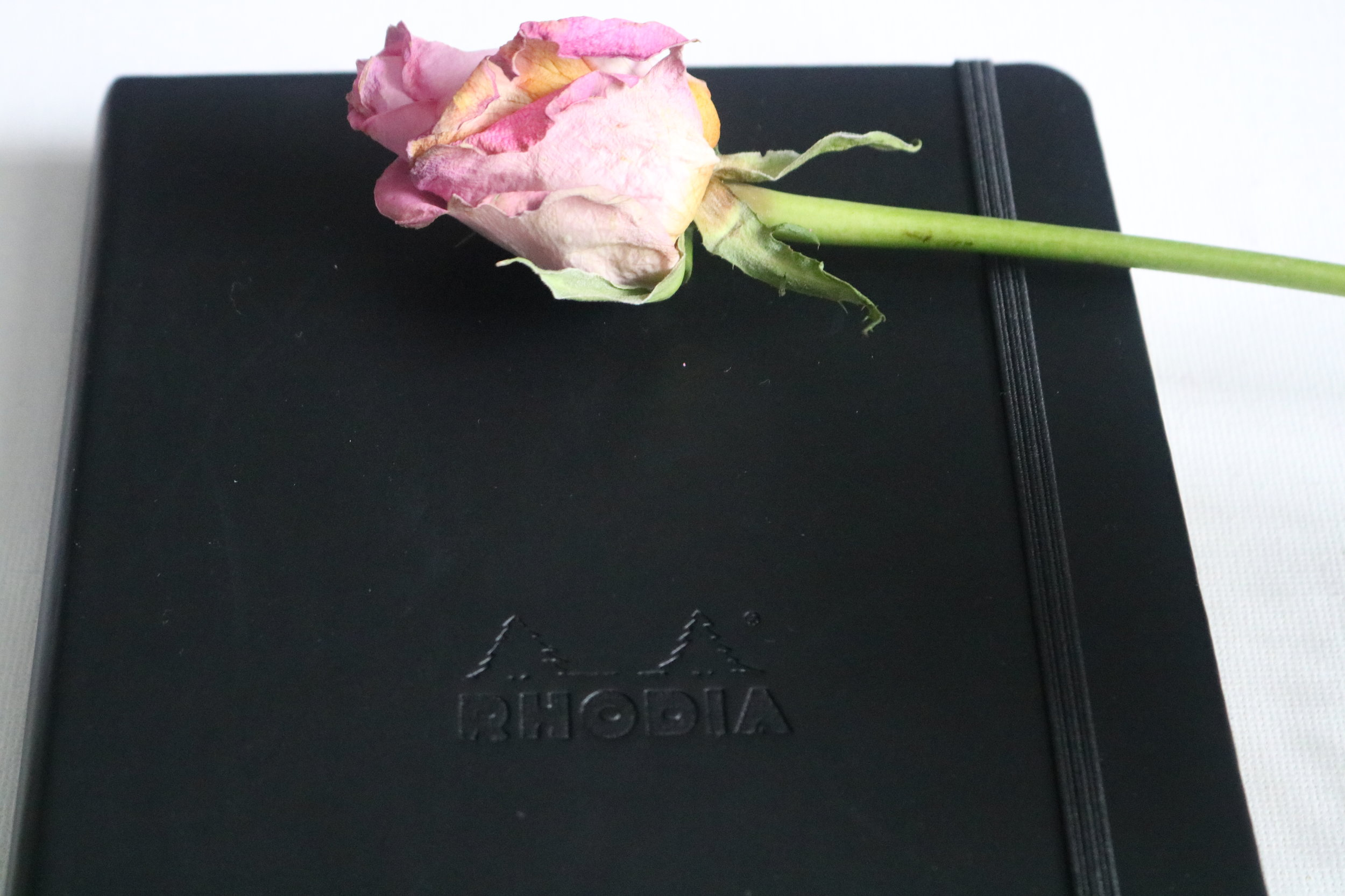 Rhodia Notebook Review