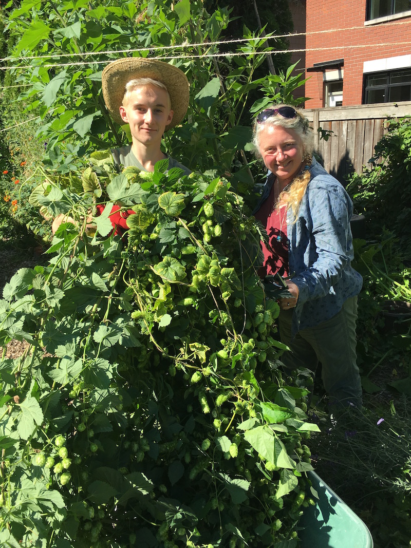 Maria and volunteer with hop plants.