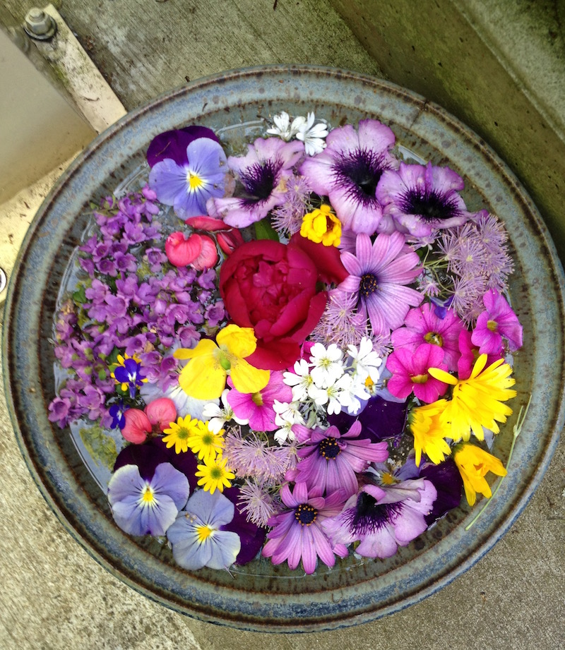 Flowers Displayed in Water
