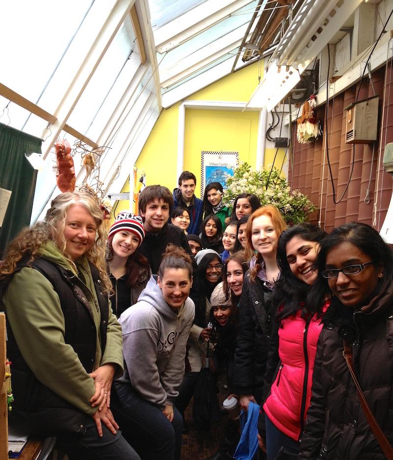 Solar Greenhouse Office Crowd