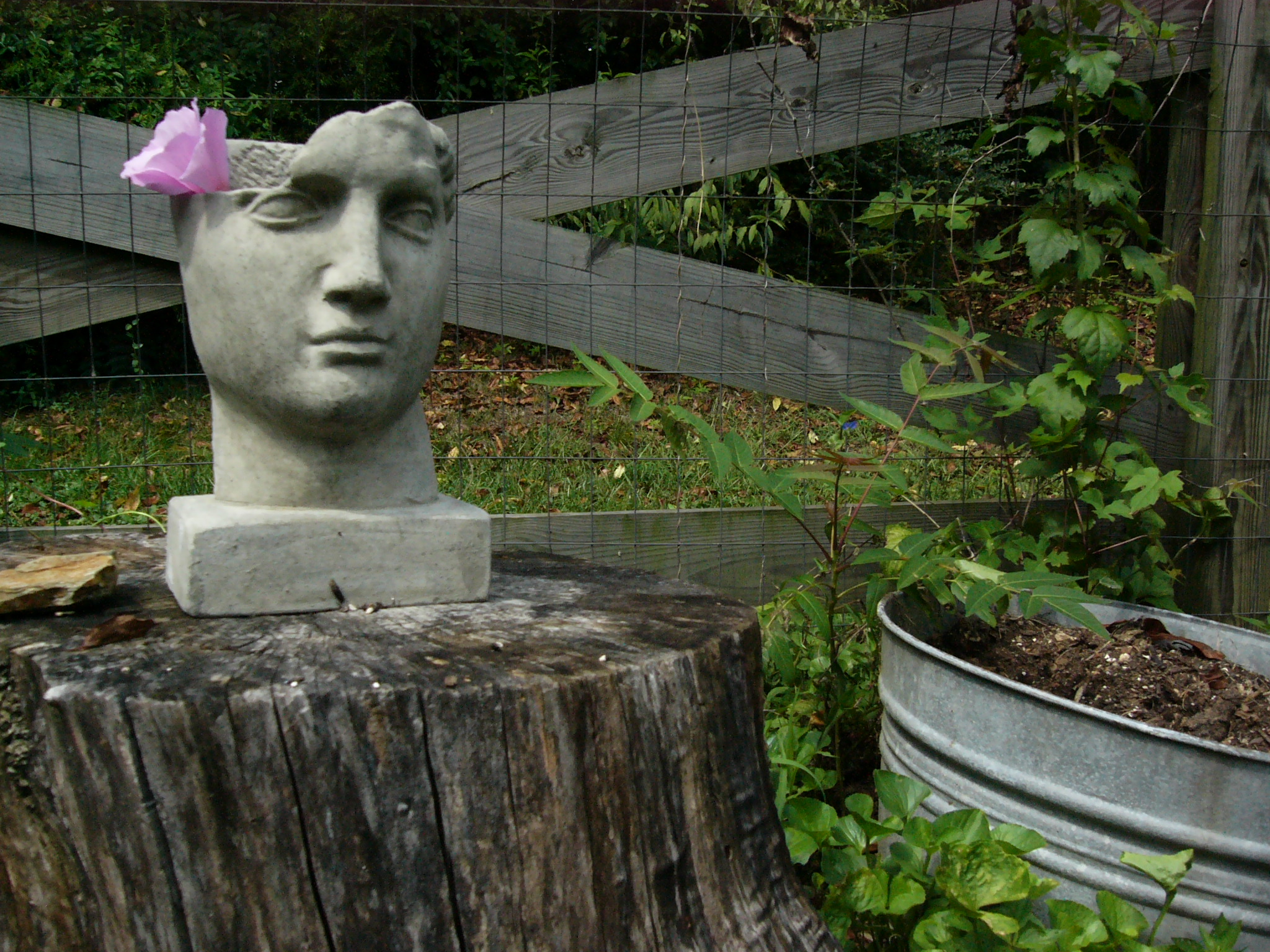 stone head.jpg