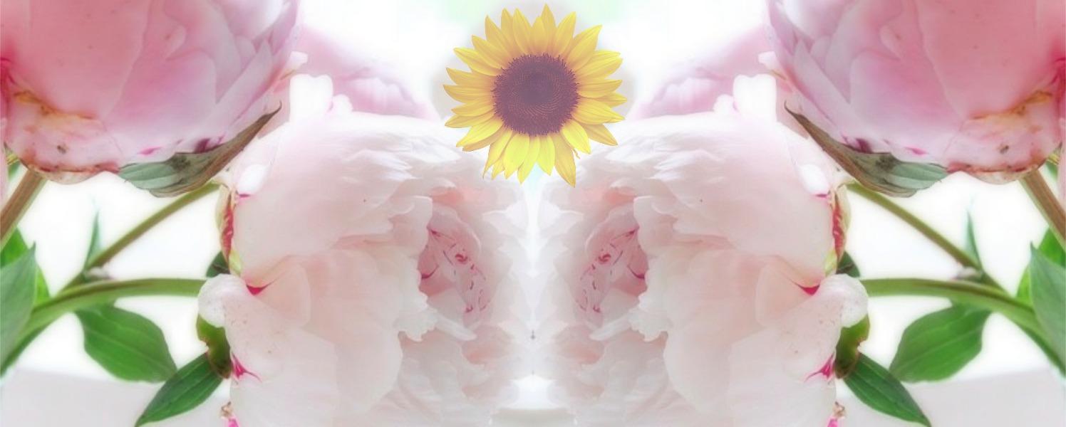+ sunflower.jpg