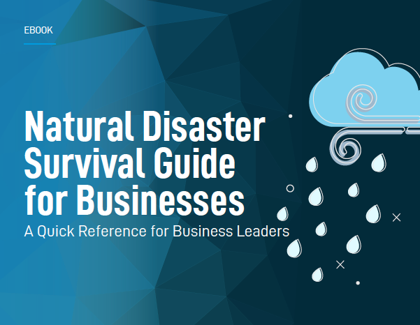 Download your free Natural Disaster Survival Guide for Businesses by clicking on the image above.