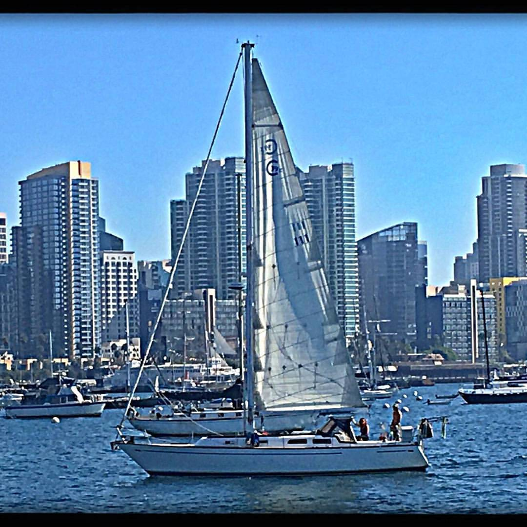 This was our home, a 1980 Cal39 with the skyline of San Diego in the background. Most weekends we would be out on the water sailing and relaxing.