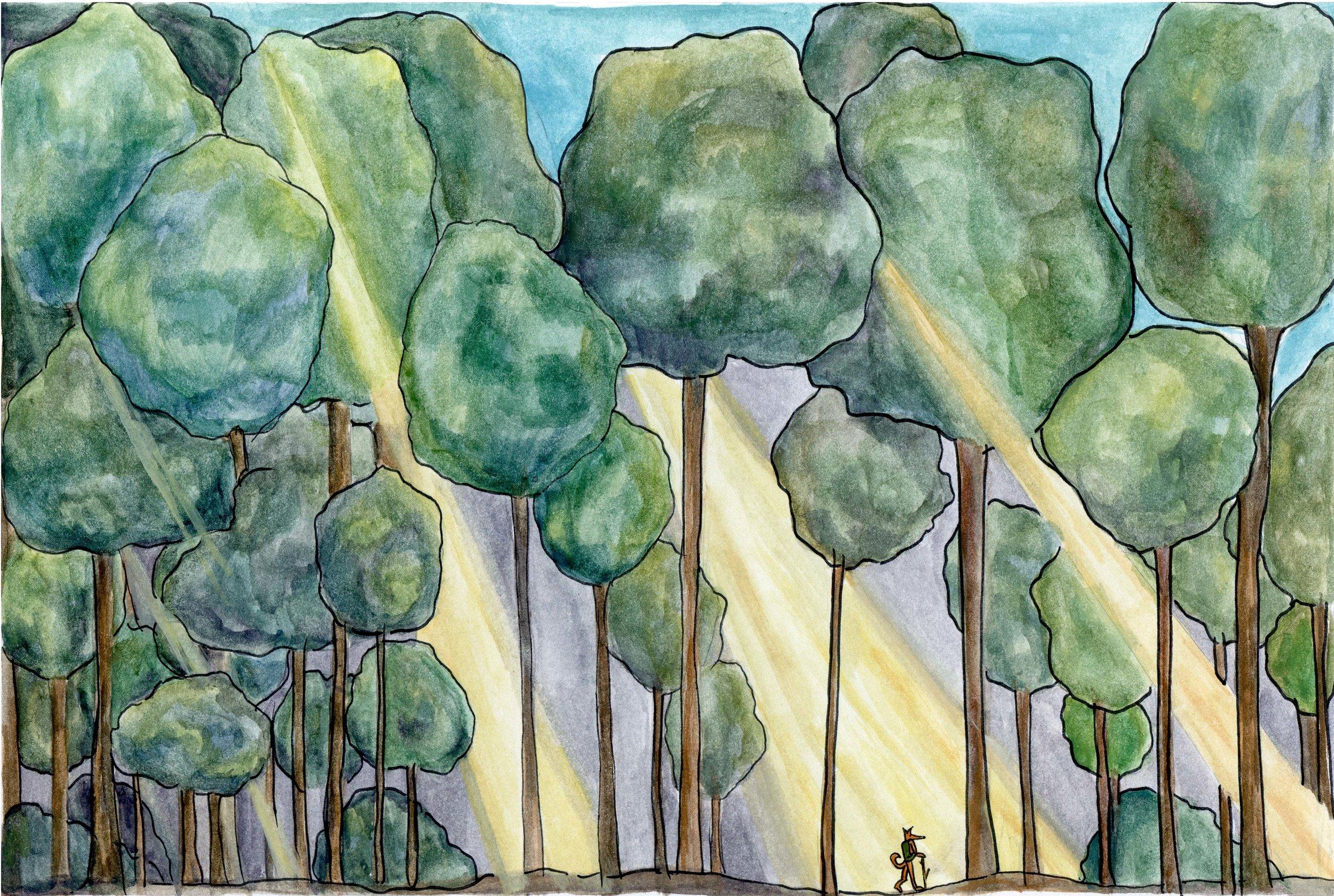 17 Forest.jpg