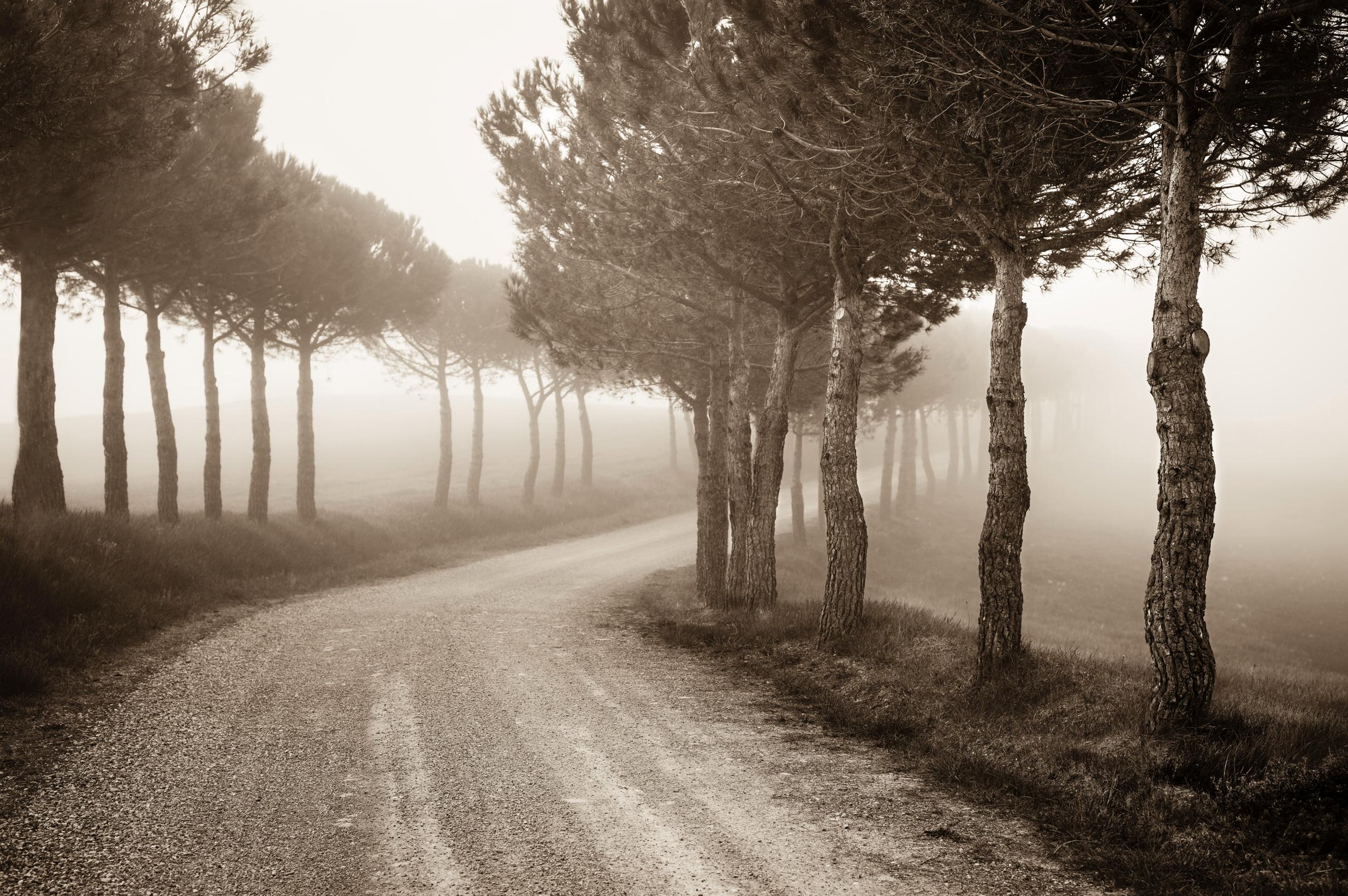 8:05 Near Monticchiello