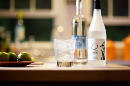 Back River Gin and Q tonic
