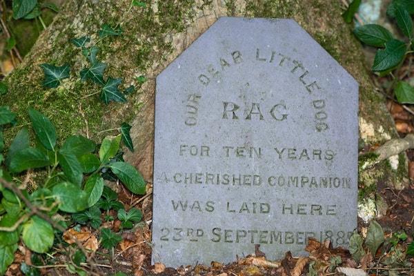 Tombstone for a beloved pet dog named Rag