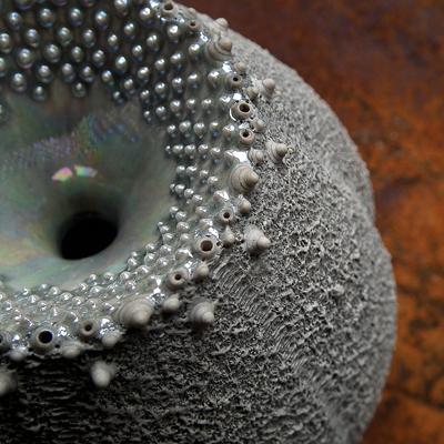Sea Urchin Inspired Pot