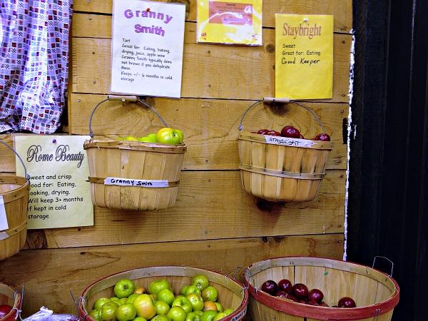 apple display.jpg