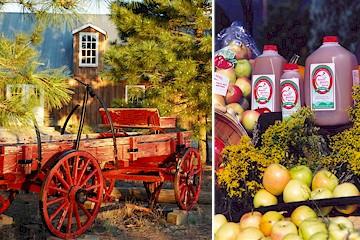 manzano-wagon-apples.jpg