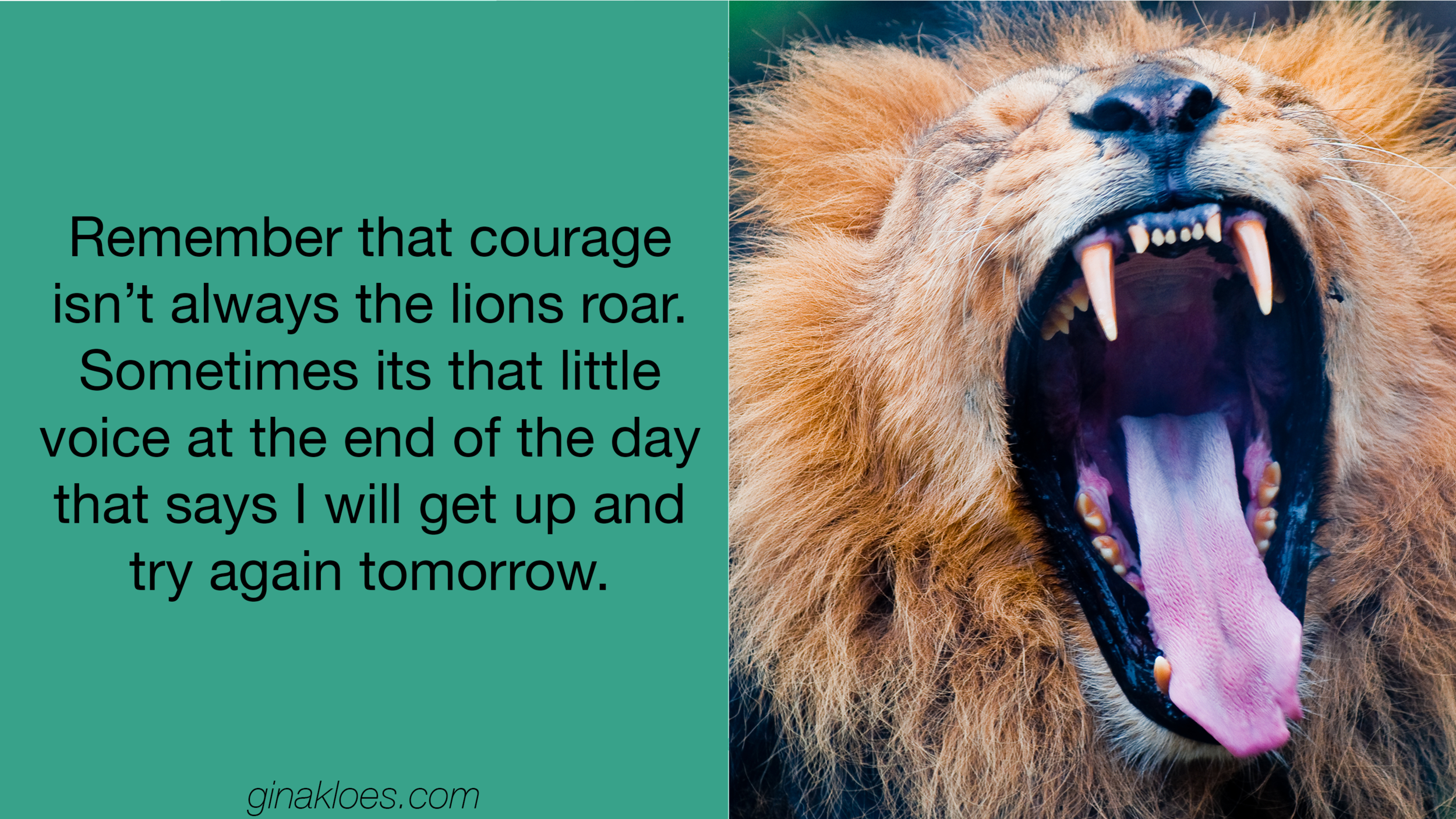 Gina Kloes - Brave and Bold Blog P2 - Blog Images.png