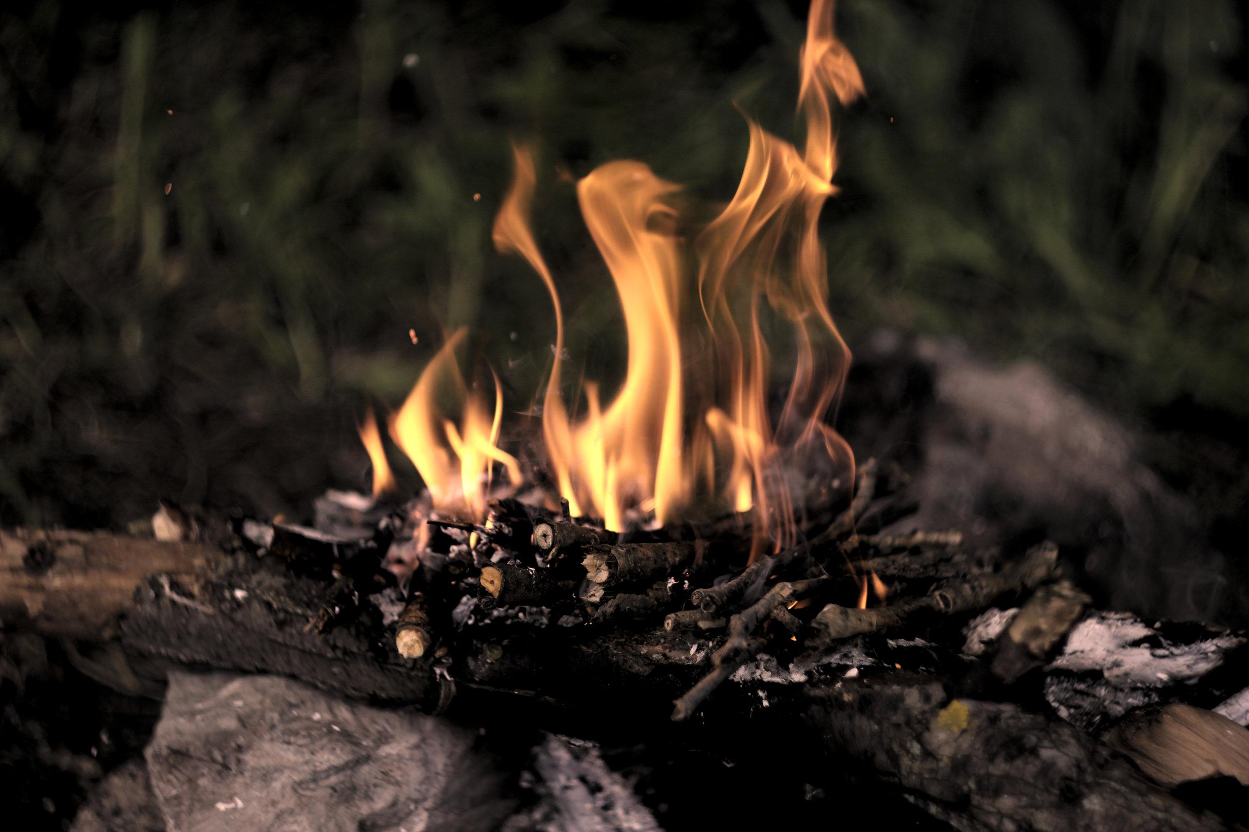 Un nuevo fuego … :: A new fire …