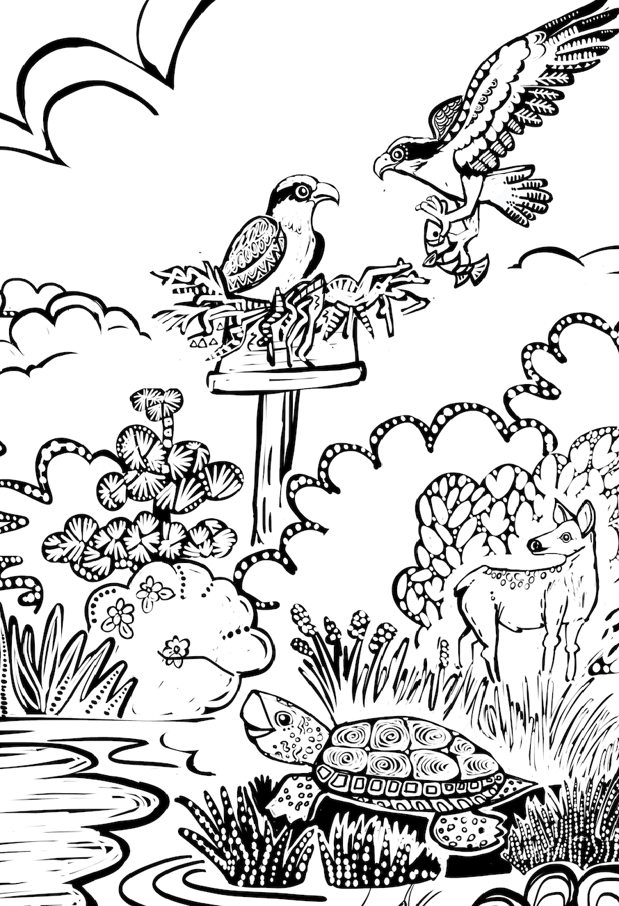 Jumping deer coloring pages   Download Free Jumping deer coloring ...   1302x890