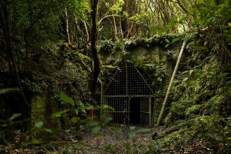 TT_Tunnels-26 (800x533).jpg