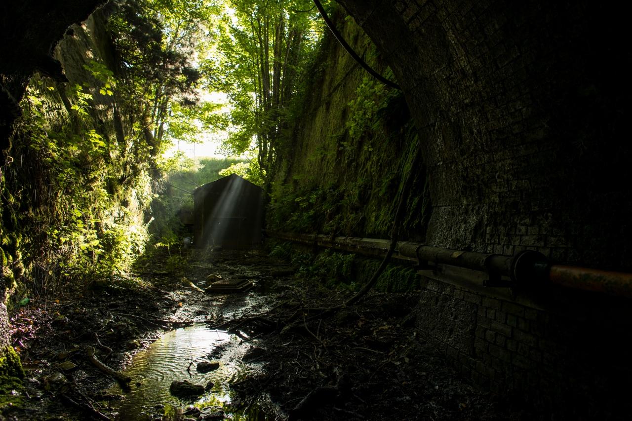 TT_Tunnels-2 (1280x853).jpg