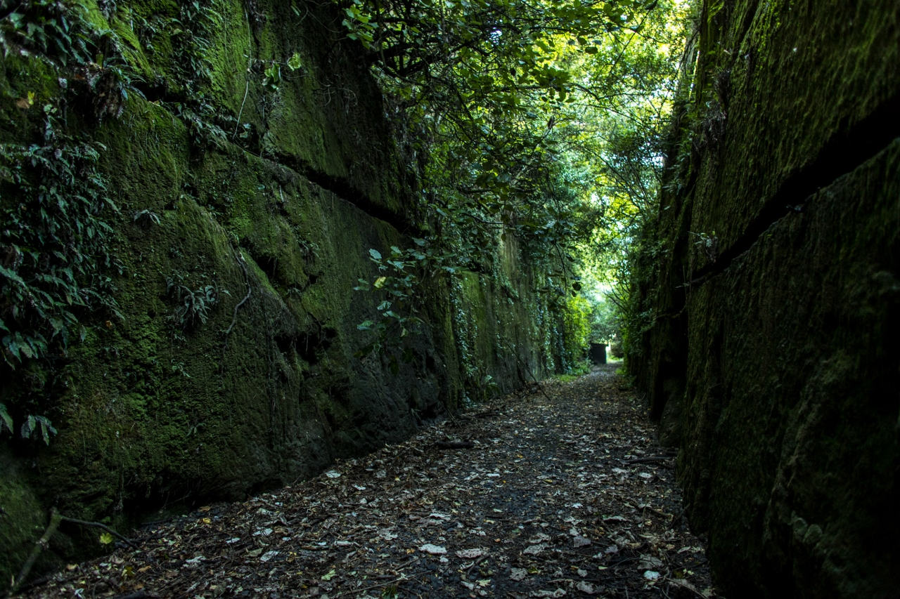 TT_Tunnels-8 (1280x853).jpg