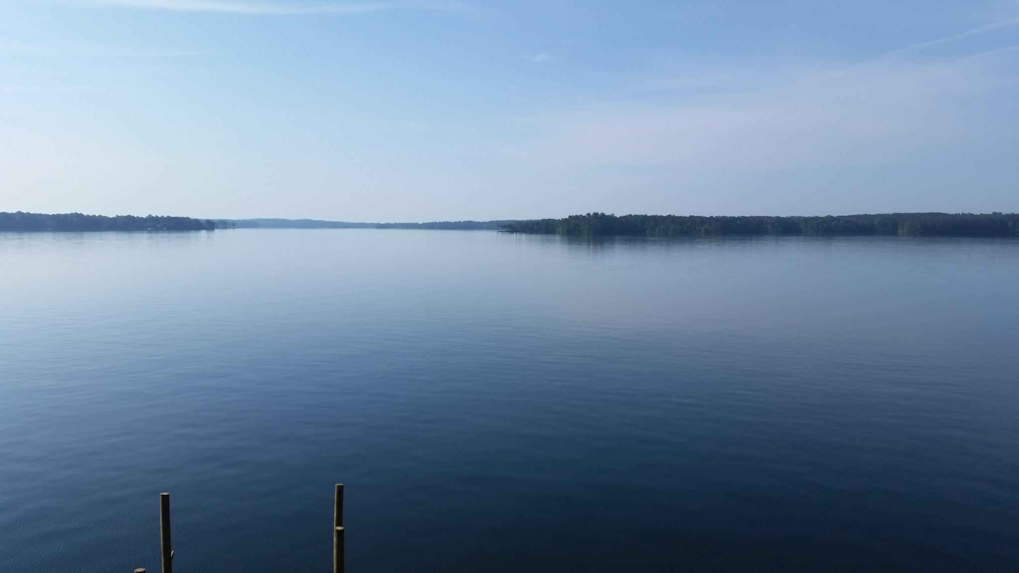 Lake Martin view