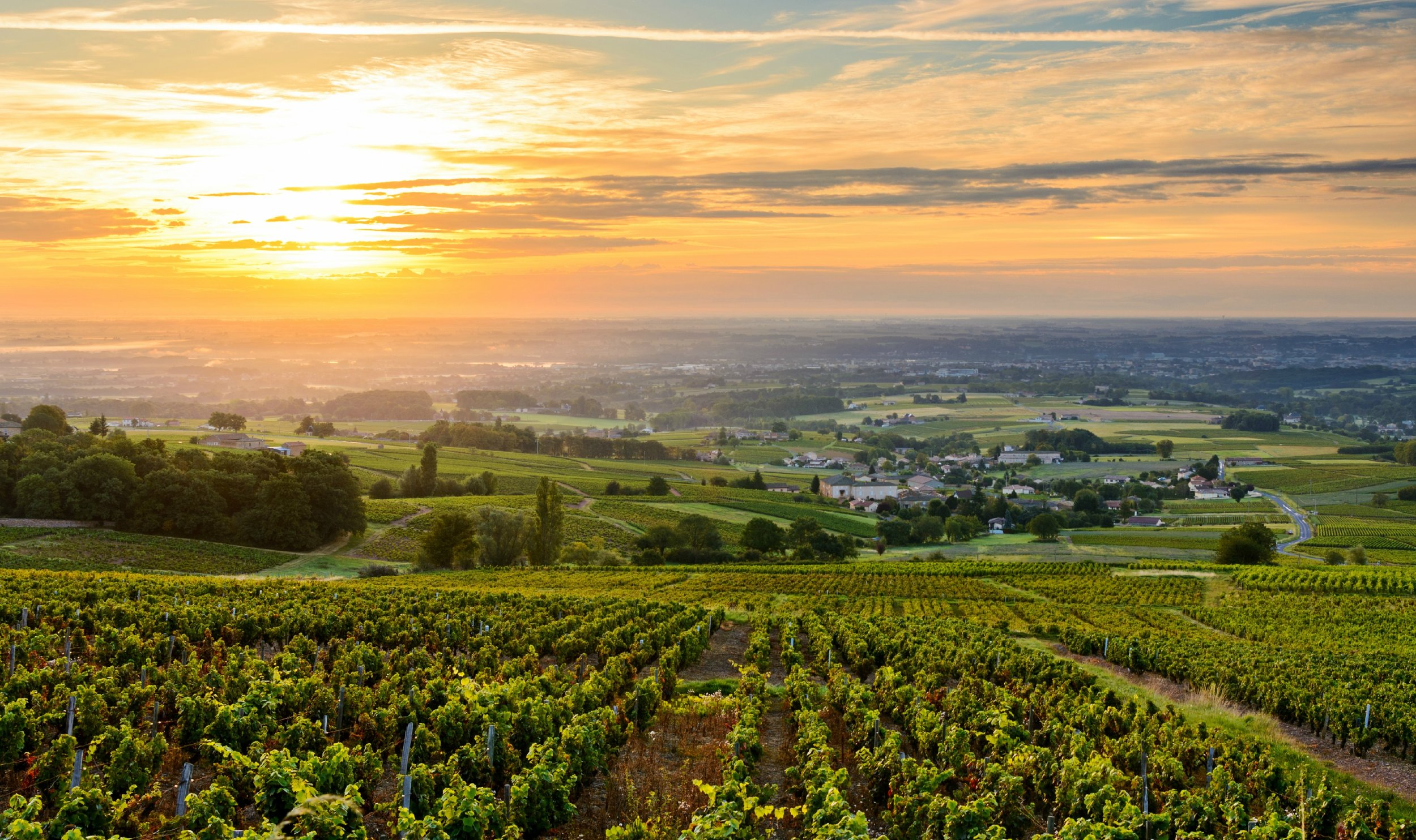 Beaujolais_Valley_sunset.jpeg